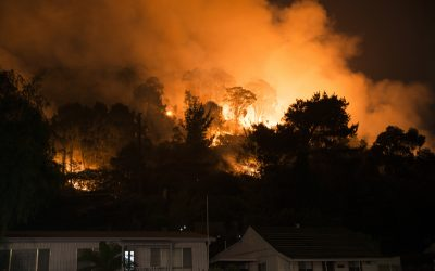 Preparing Your House for a Bushfire